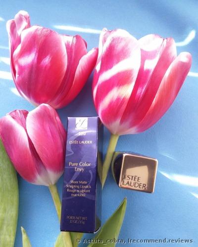 Estee Lauder Pure Color Envy Sheer Matte  Lipstick