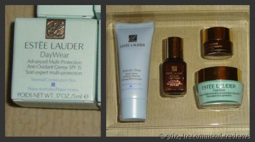 Estee Lauder DayWear Advanced Multi-Protection Anti-Oxidant Creme SPF 15